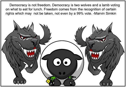 ULVER OG LAM:demokrati